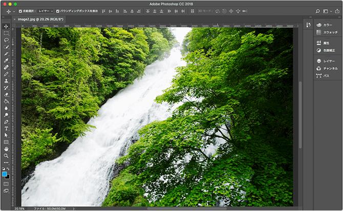 「森にある清流」の写真